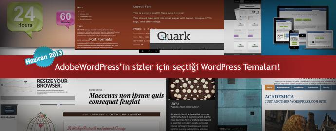 WordPress Haziran Temaları