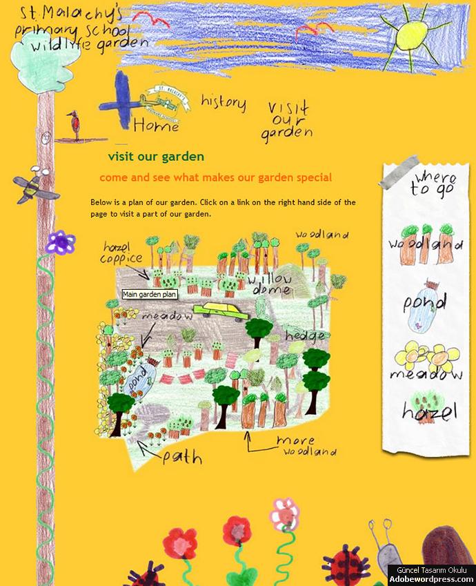 Our-Wildlife-Garden