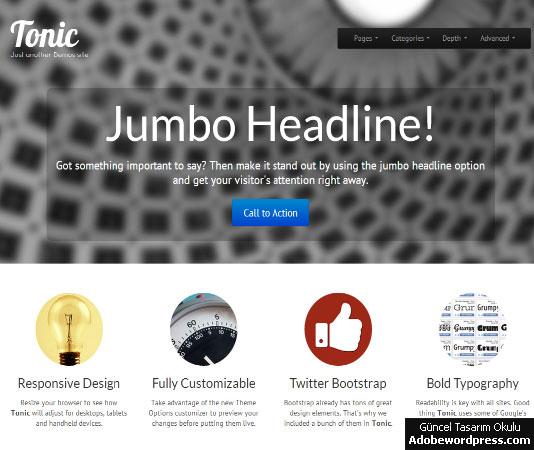 Tonic WordPress Teması