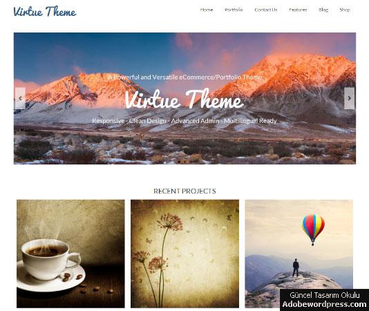 Virtue WordPress Teması