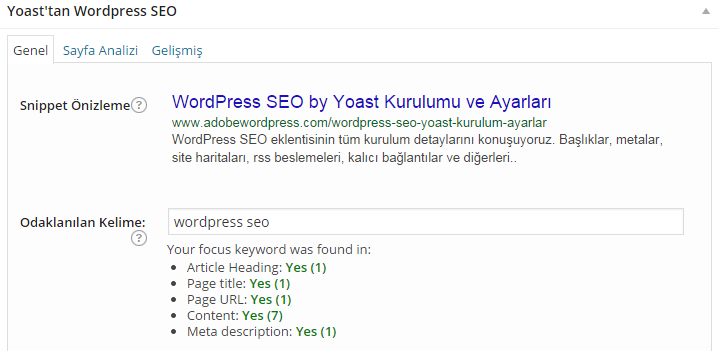 wordpress-seo-sample