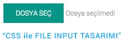 css-file-input-design