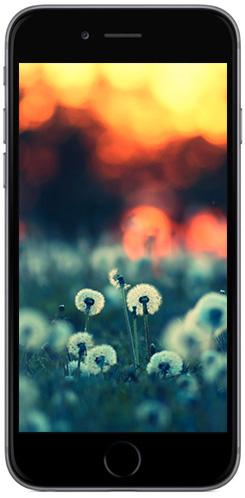 iphone6-screenshot-14