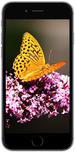 iphone6-screenshot-24