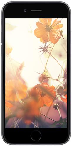iphone6-screenshot-35